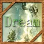 明晰夢や見たい夢を簡単に見る方法!夢をコントロールして幸せに