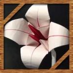 折り紙のゆりの簡単な折り方!人気の花を立体的に作ろう