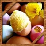 イースターエッグのチョコの作り方に子供と簡単に作るお菓子レシピ