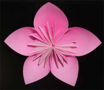 折り 折り紙 折り紙 桜 作り方 : nichijou-kissa.com