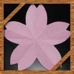 折り紙や花紙で簡単な桜の花びら!切り絵にも使える切り方作り方