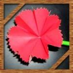 折り紙でカーネーションの折り方!母の日に簡単立体的な作り方を紹介