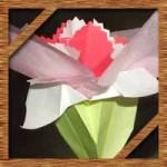 折り紙と花紙でカーネーションの花束を手作り!簡単立体的な作り方