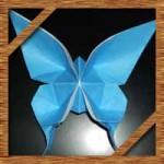 折り紙のちょうちょの折り方!立体で美しい蝶の簡単な作り方