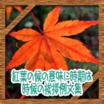 紅葉の候の意味に時期はいつからいつまで?時候の挨拶手紙の例文集