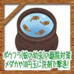 ボウフラ(蚊の幼虫)の駆除対策!メダカや10円玉に洗剤で撃退!