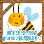蜂に刺された時の対処法!応急処置や腫れかゆみの薬に病院は何科へ?
