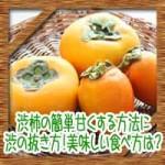 渋柿の焼酎で簡単甘くする方法に渋の抜き方!美味しい食べ方は?