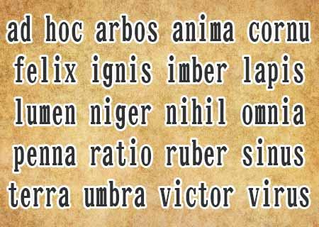 かっこいい単語 ラテン語