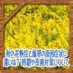 秋の花粉症と風邪の原因症状に違いは?時期や改善対策について