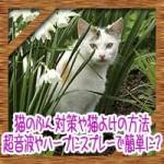 猫のふん対策や猫よけの方法!超音波やハーブにスプレーで簡単に?
