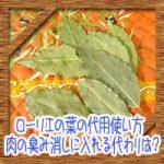 ローリエの葉の代用使い方!肉の臭み消しやカレーポトフに入れる代わりは?
