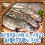 魚の臭み取りや臭い消し!生臭さを消す簡単下処理の方法とは?